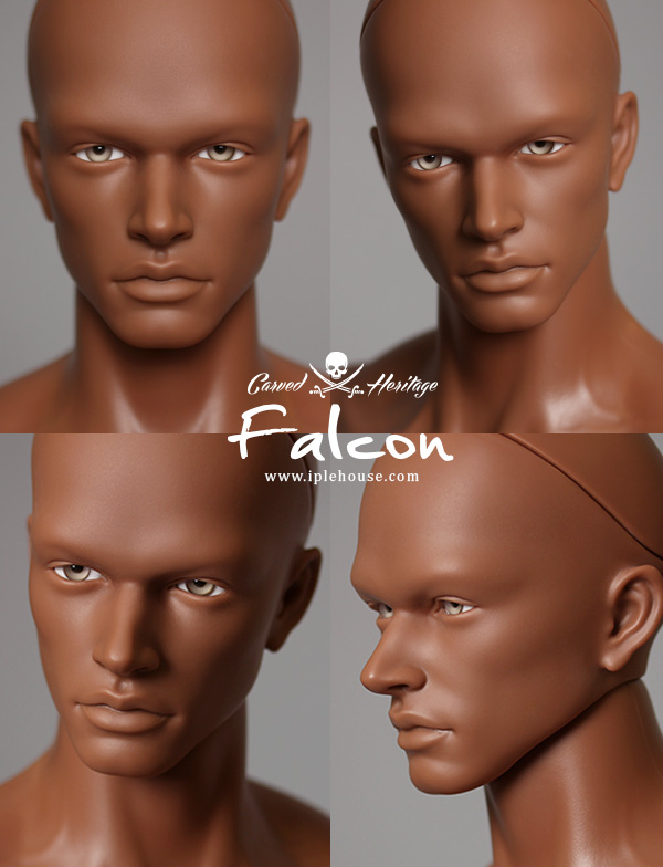 IPLEHOUSE-HID-falcon-1.jpg