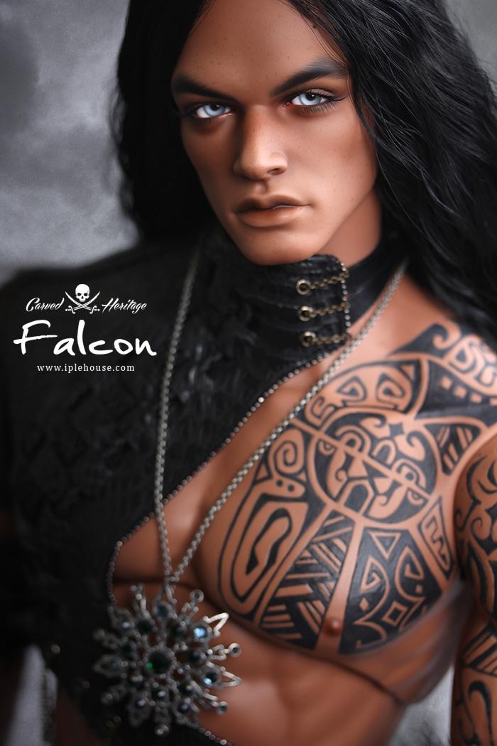 IPLEHOUSE-HID-falcon-4.jpg