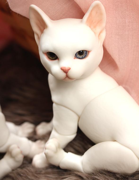 ipleouse-Pet-Doll-Cat-3.png