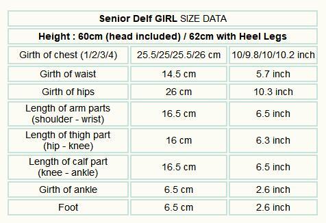 luts_Senior_Delf_GIRL_Body_data.jpg
