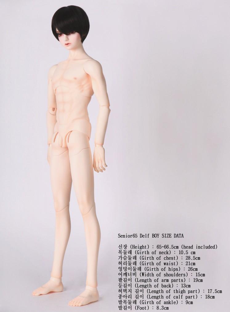SDF65_body_004.jpg