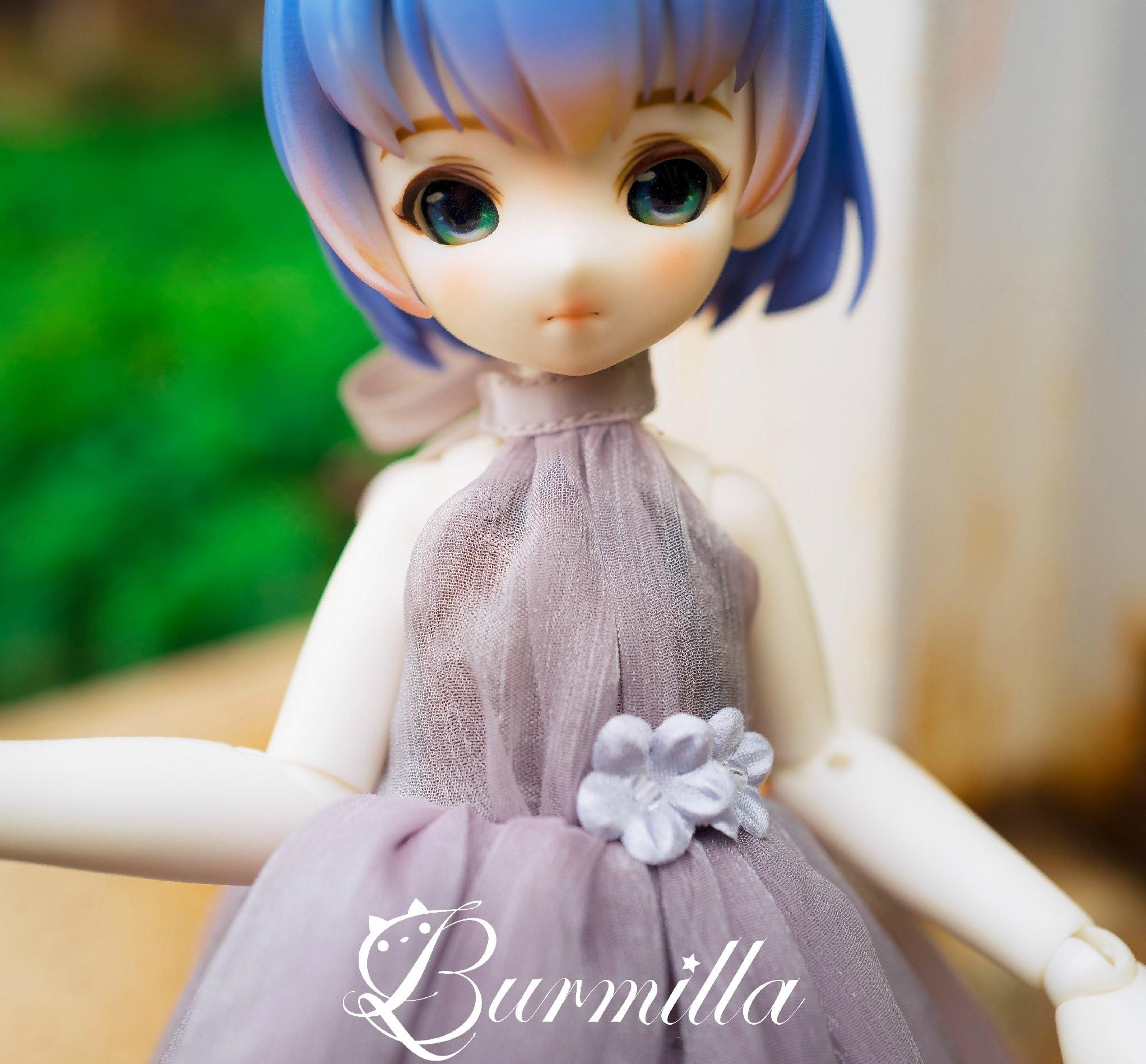SIO2-burmilla-1.jpg