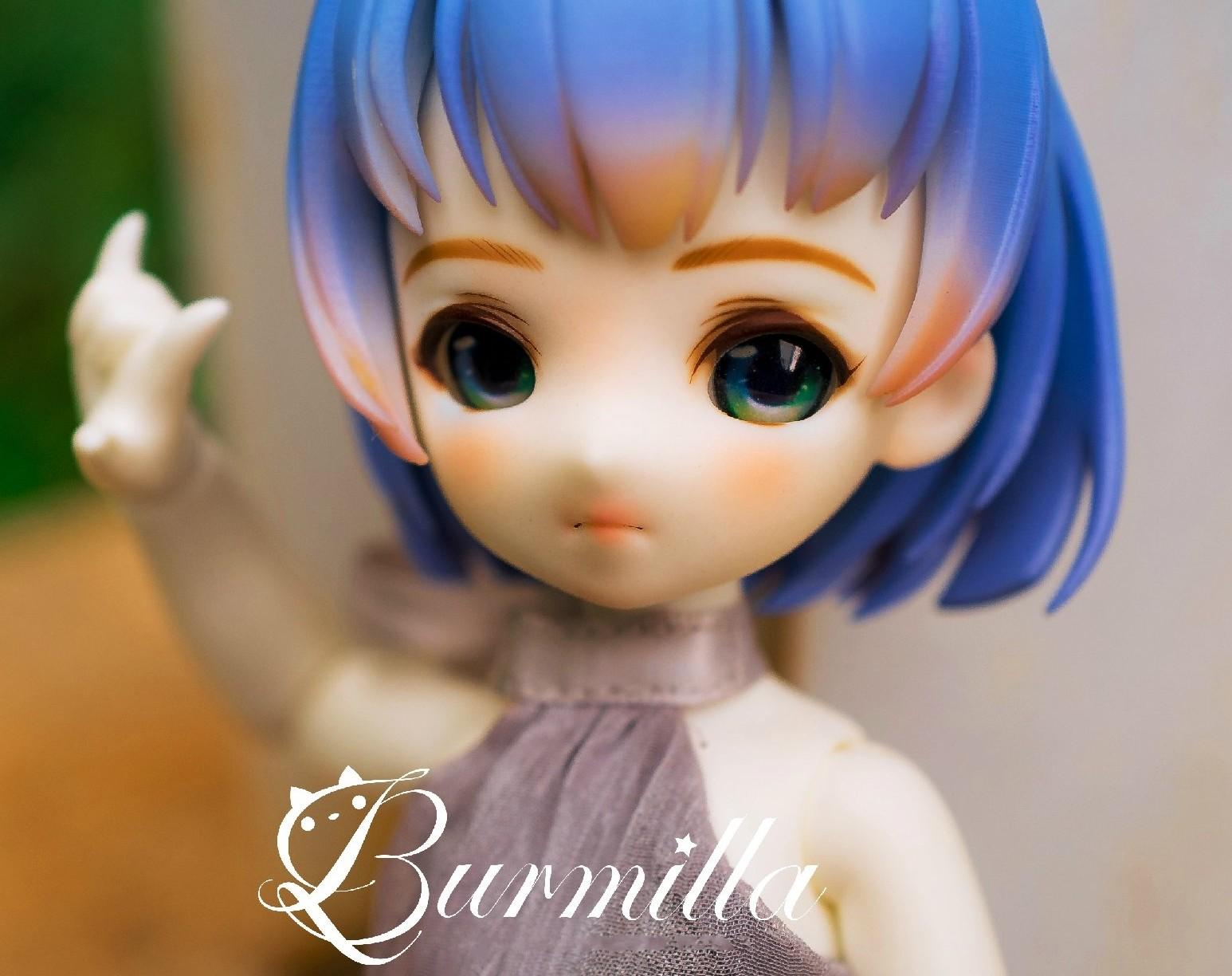 SIO2-burmilla-2.jpg