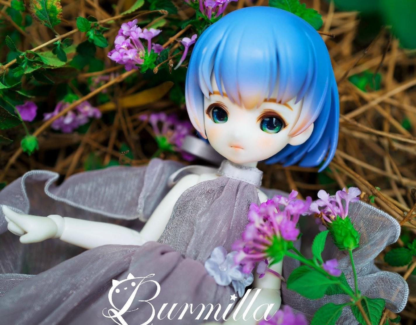 SIO2-burmilla-4.jpg