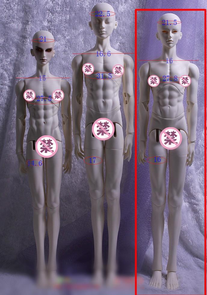 TD72-MALE-BODY-2.jpg