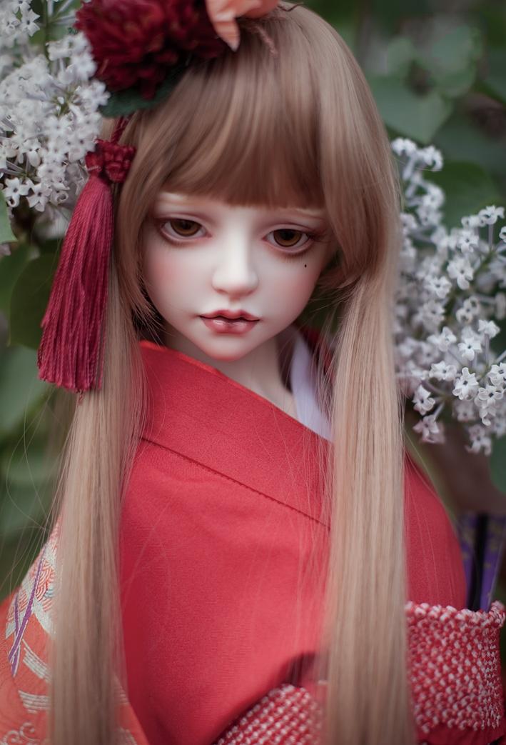 Camellia_1.jpg