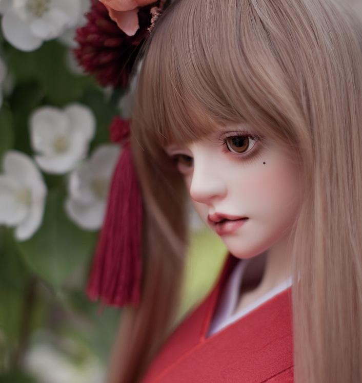 Camellia_3.jpg