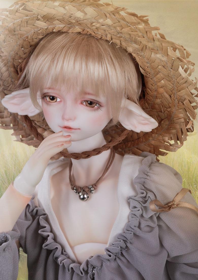 CD-Fox_1.jpg