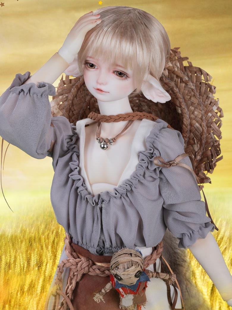 CD-Fox_2.jpg
